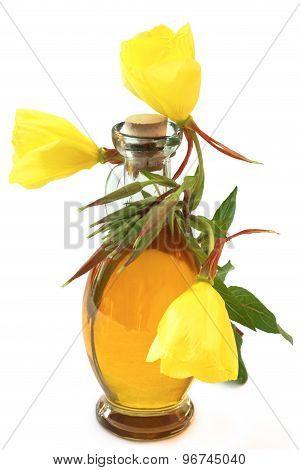Evening Primrose Oil