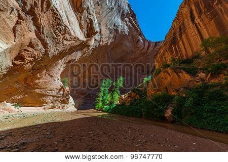 Inside The Coyote Gulch