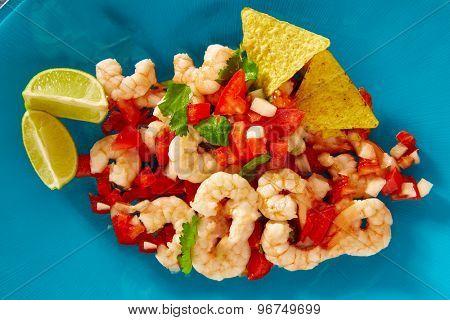 Ceviche de Camaron shrimp mexican food on blue plate