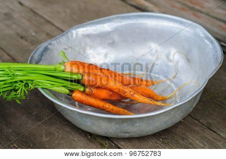 Washing The Bunch Of Carrot