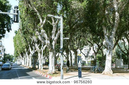Quiet street in the center of new Tel Aviv, Israel
