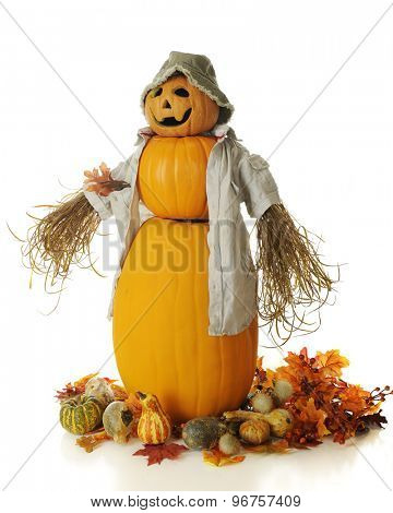 A snowman style pumpkin man with a bucket hat, casual shirt and bushy arms.  He's surrounded by autumn leaves, foliate and gourds.  On a white background.