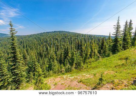 Rocky Mountains. Coastal Mountains. Blackwall Peak trail in Manning Park. British Columbia. Canada.