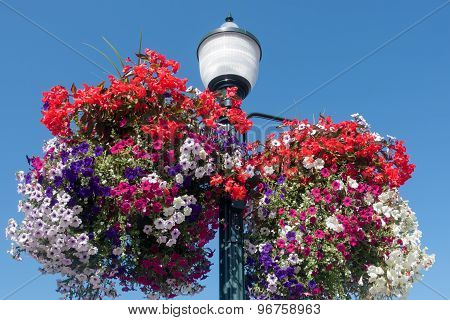 Streetlamp And Flower Baskets