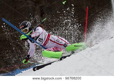 GARMISCH PARTENKIRCHEN, GERMANY. Feb 11 2011: Elisabeth Goergl (AUT) competing in the women's slalom at the 2011 Alpine skiing World Championships.