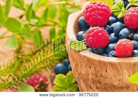 Raspberries and blueberries with green leaves macro