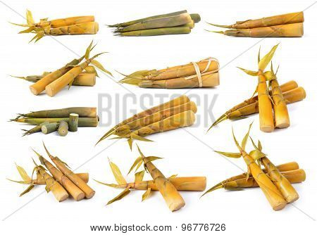 Bamboo Shoot On A Over White Background