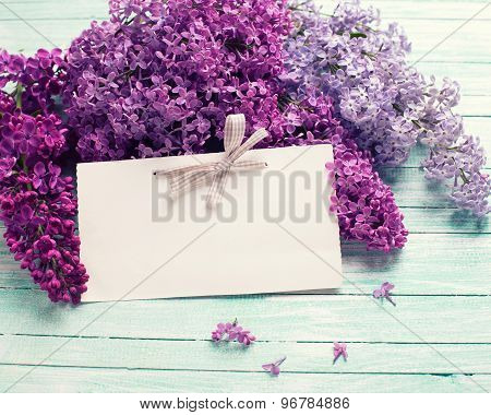 Background With  Lilac Flowers  And  Empty Tag