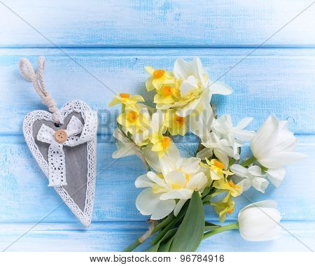 Background With Fresh Narcissus  And Tulips And Decorative Heart