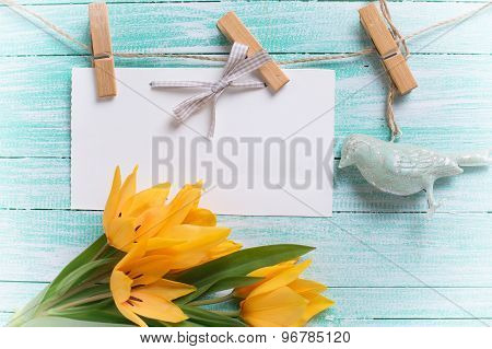 Background With Fresh Tulips And Empty Tag