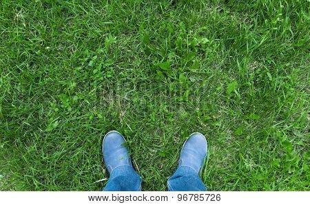 Legs Of Man