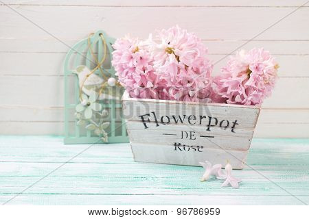Fresh Pink Hyacinths In Wooden Box