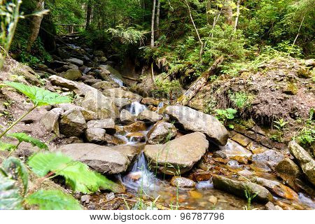 Mountain Stream Flows Between Stones