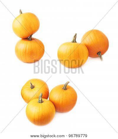Orange pumpkin composition isolated
