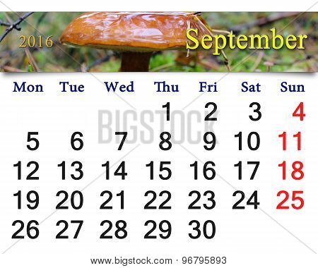 calendar for September 2016 with big mushroom