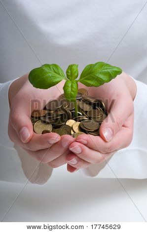 New business perspective - seedling in coins