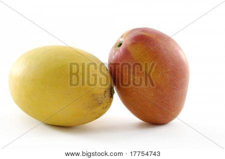 Fresh tropical mango fruit, isolated on whit