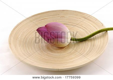 Pink water lily in wooden bowl