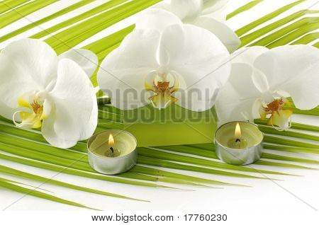 Orchid, candle, soap in a sp