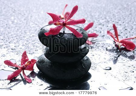 Balance with red flower-spa icon