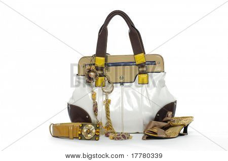 Fashion bag, belt and shoes over white