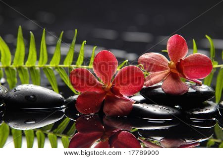 Oriental spa with orchid with candle and pebbles