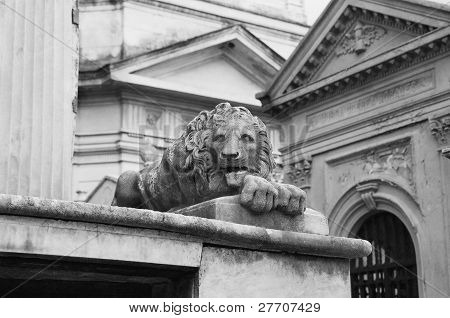 Lonely lion at the cemetery