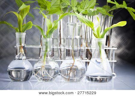 Sterile conditions, laboratory