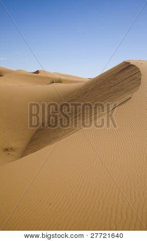Sand Desert with Dunes in Marocco, merzouga