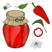Collection Of Different Objects. Glass Jar With Home Made Chilli. Hand Drawn Objects Isolated. Vecto poster