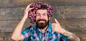 Man Hold Grapes Wooden Background. Farmer Bearded Guy With Homegrown Harvest Grapes Put On Head. Far poster