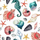 Beautiful Seamless Pattern With Hand Drawn Watercolor Sea Animals Fish Shell Starfish poster