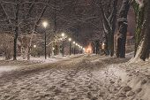 Snowy Path Sidewalk Street Snowfall Lanterns Street Lamps Quiet Scene Peaceful City poster