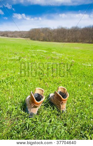 Hiking Boot On The Meadow