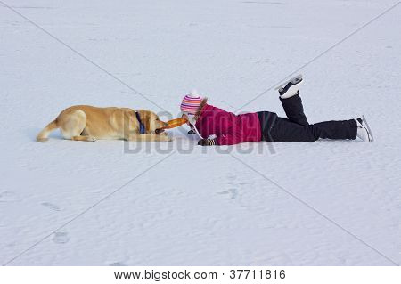 Playing With Dog In Winter