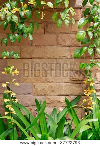 Yellow Flower Frame on Brown Bricks Wall