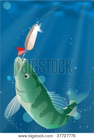 Fish on a hook under water