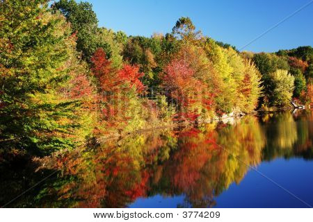 Autumn Colors In The Trees Reflecting In Lake