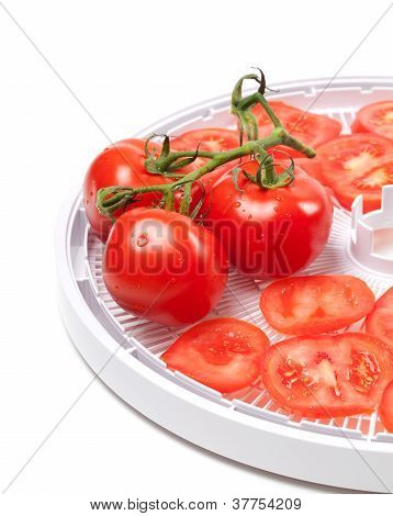 Ripe Tomato On Food Dehydrator Tray