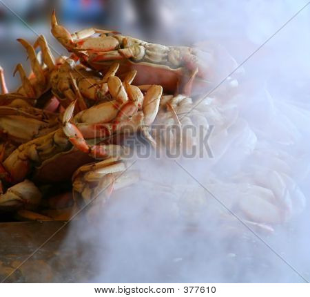 Steamed Dungeness Crab