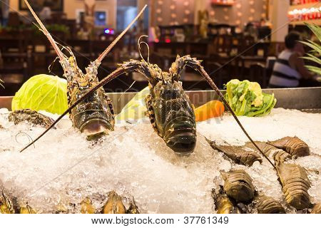 Lobster Mantis Shrimp In Tray With Ice.