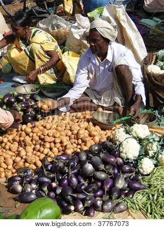 Villagers Sell Eggplant