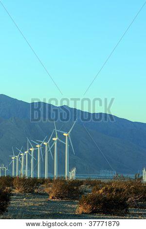 Wind Mills at Dusk; Copyspace