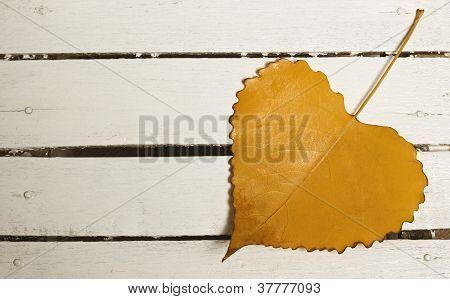Heart-shape Autumn Leaf