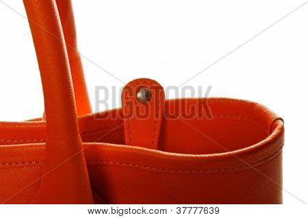 Details Of Women's Ginger Handbag