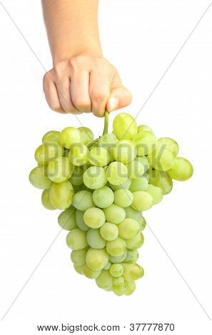 Female Hand Holding White Grapes