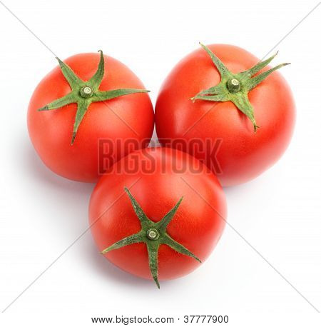 Red Tomatoes Top View