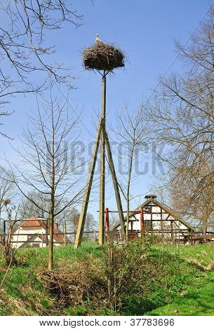 Village of Storks Zywkowo,Polonia