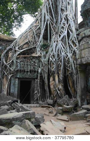 Khmer temple entrance, Angkor Wat