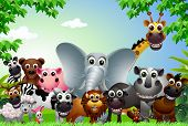 pic of rhino  - vector illustration of funny animal cartoon in the jungle - JPG